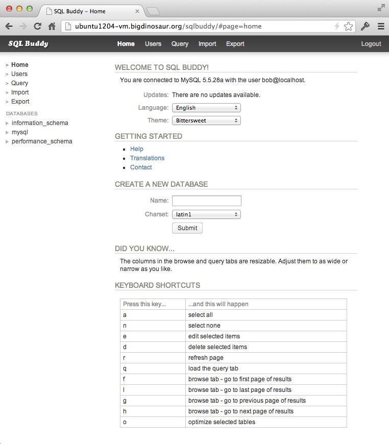 Initial login screen for SQL Buddy.
