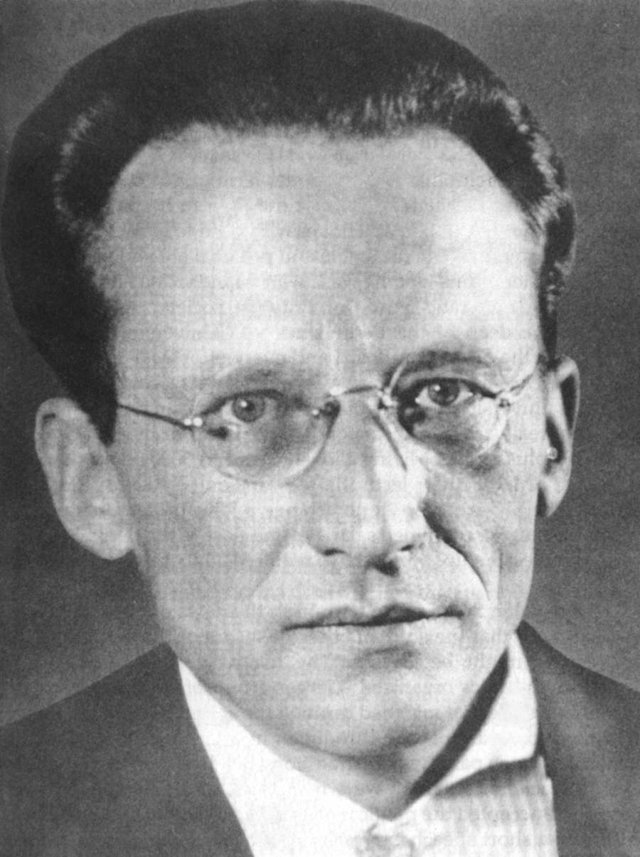 Erwin Schrödinger, who pondered the deep connection between quantum physics and biology. (We're not referring to his famous thought experiment involving cats, or his unconventional living arrangements, either.)