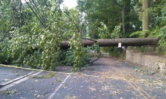 A tree downed by the June 2012 derecho blocks a road in Falls Church, VA.