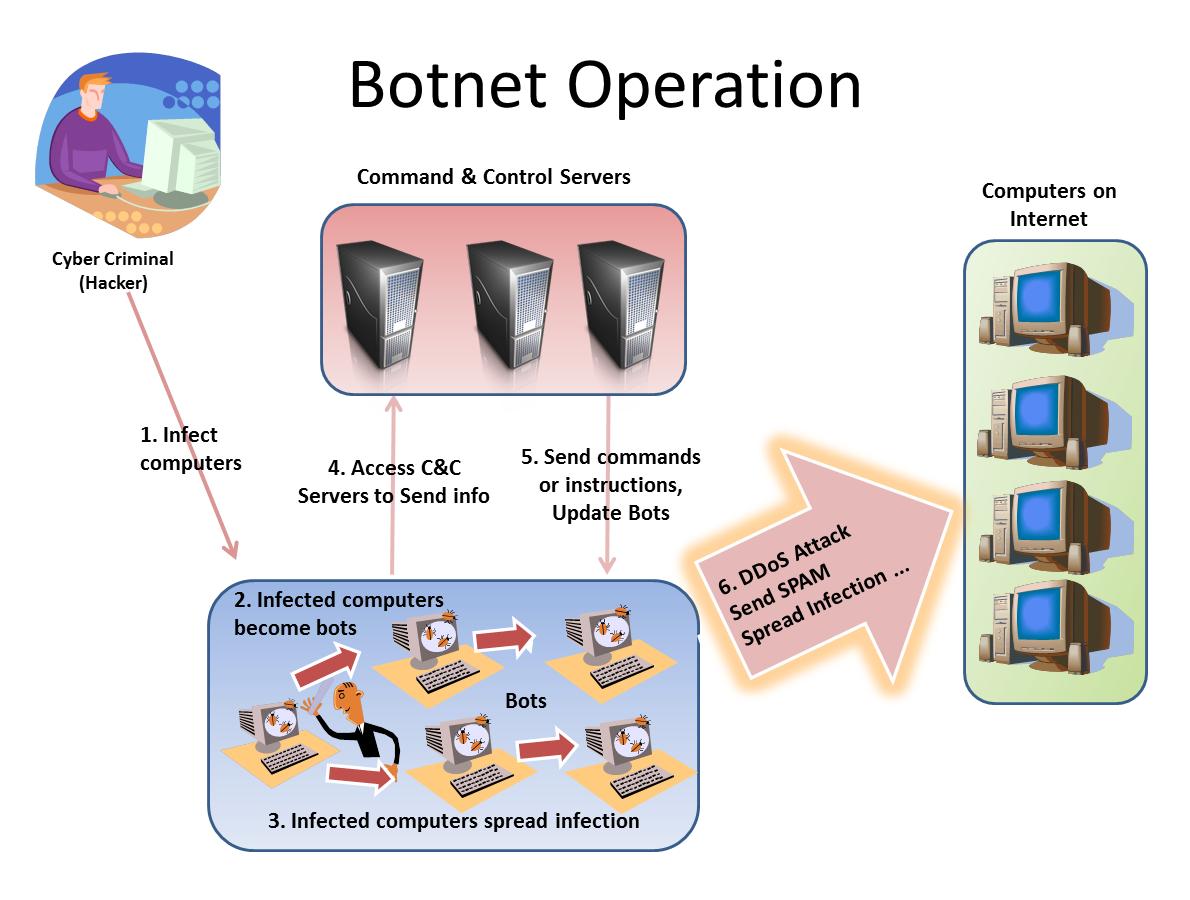 Botnet basics.