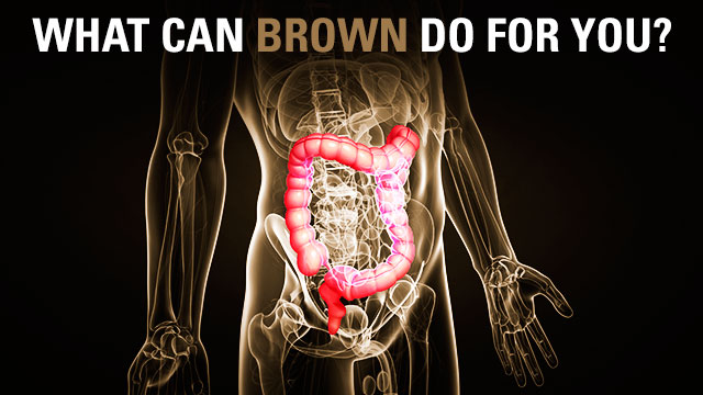 Fecal transplants cure diarrhea, modulate testosterone levels