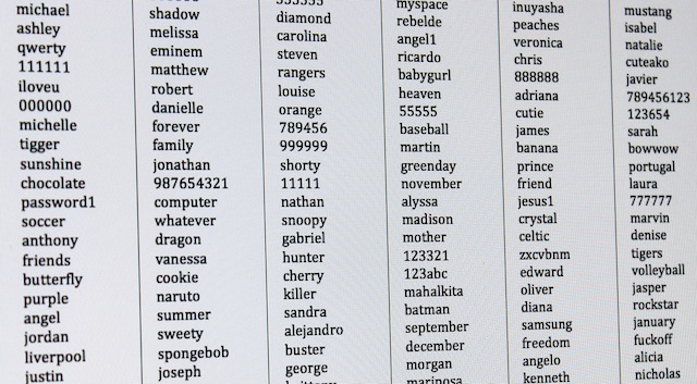 A small slice of the infamous RockYou wordlist.