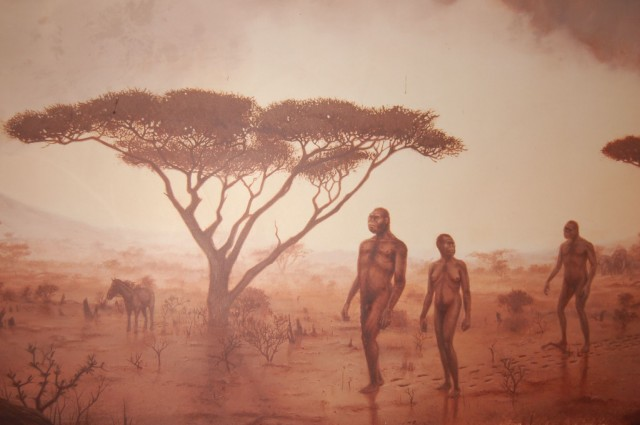 A painting in the Olduvai Gorge Museum, Ngorongoro Conservation Area, Tanzania.