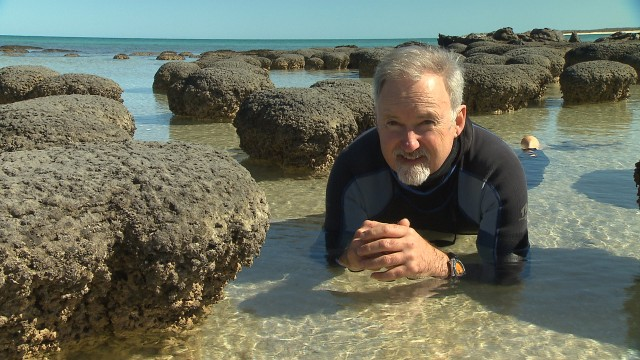 Host Richard Smith with the modern stromatolites of Shark Bay.