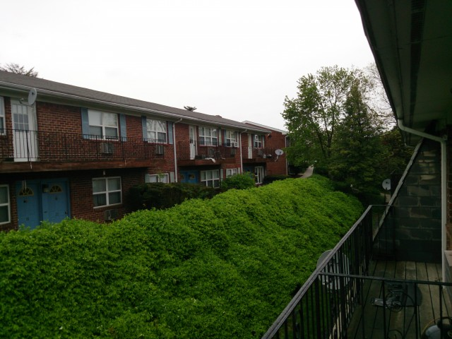 Overcast outdoors, Xperia ZL.