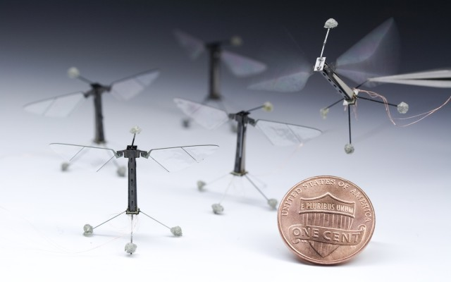 Researchers build miniature flying robots, modeled on Drosophila