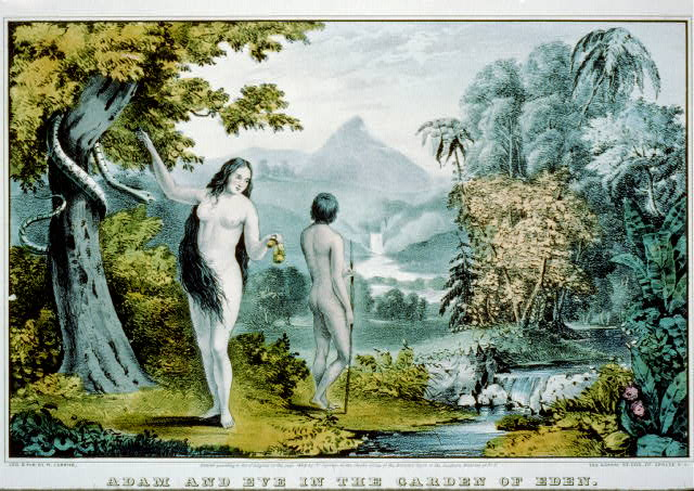 Genetic Adam and Eve may have walked on Earth at the same time