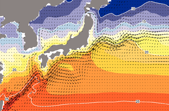 Model simulation showing average ocean current velocities and sea surface temperatures near Japan.