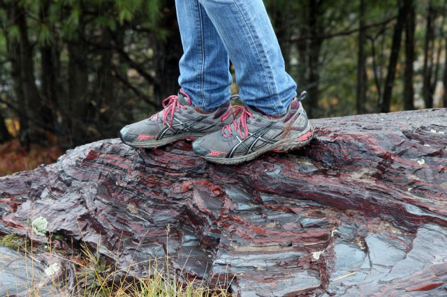 Oxygen-breathing organism standing on some banded iron formation.