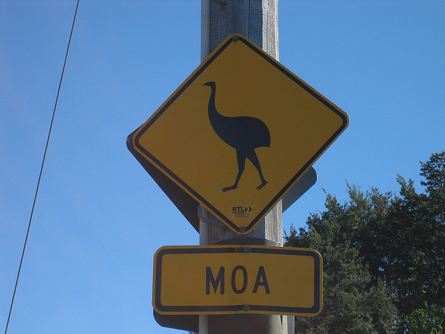 Scientists also uncovered this ancient sign in New Zealand.