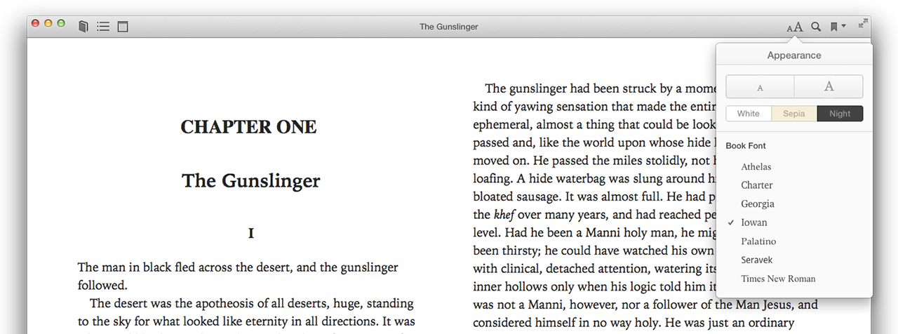 Even the iBooks toolbar is understated (albeit non-standard). The appearance options are simple but adequate.