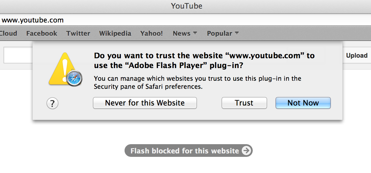 "When configured to ""Ask"" about plug-ins on the first visit to a website, Safari presents these options."