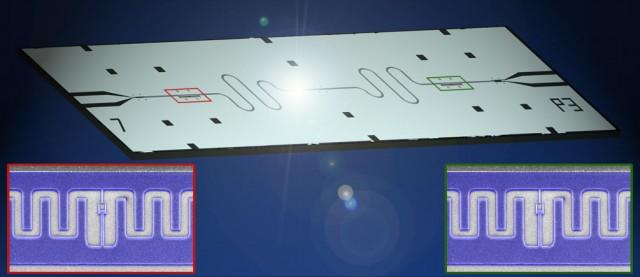Transmon based qubits on a quantum processor.