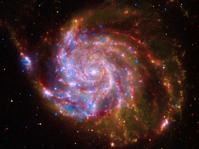 Composite image of M101, the Pinwheel Galaxy, which is host to an anomalously bright black hole. The red is infrared, the yellow is visible light, and the blue is X-ray data.