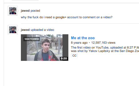 Apparently, YouTube's co-founder is not a fan of Google+.