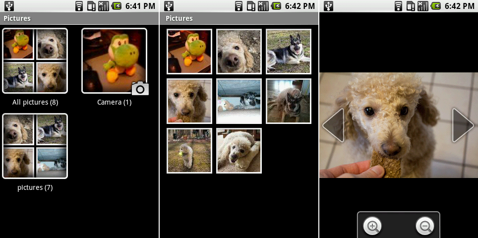 "The ""Pictures"" all album view, individual album view, and a single picture view."