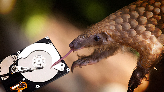 If you're not an expert on armored anteaters that's a pangolin.