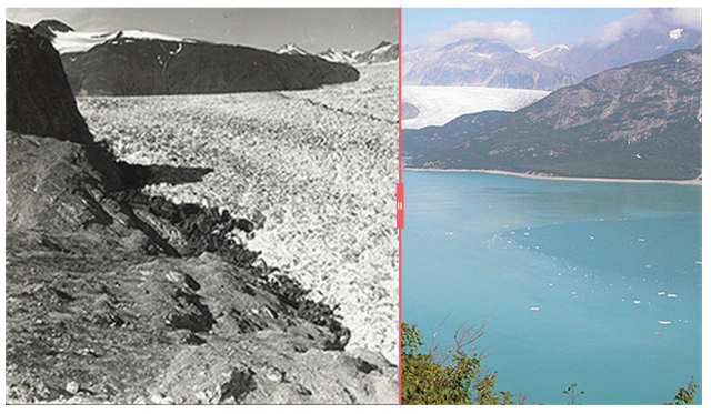Before and after, Alaska-style. A slider lets you appreciate the rapid retreat of the Muir Glacier.