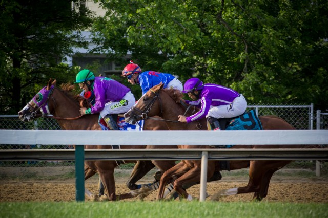 Genes may be key as California Chrome aims for racehorse history books