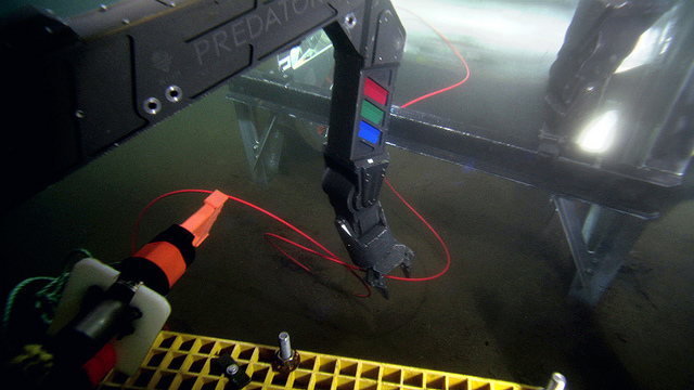 The Remotely Operated Platform for Ocean Sciences (ROPOS) is a world-class remotely operated vehicle (ROV) that can work at depths of 5,000m. Here, it's pulling loose cable from beneath the ROPOS cable-laying system.