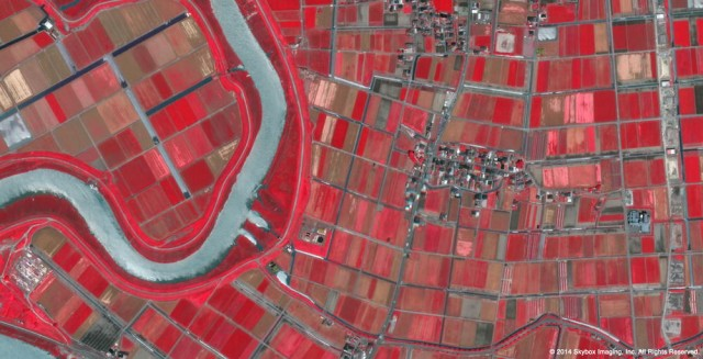 Google buys satellite imaging company Skybox for $500 million