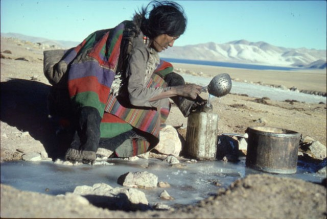 Tibetans' altitude tolerance may have come from our extinct relatives