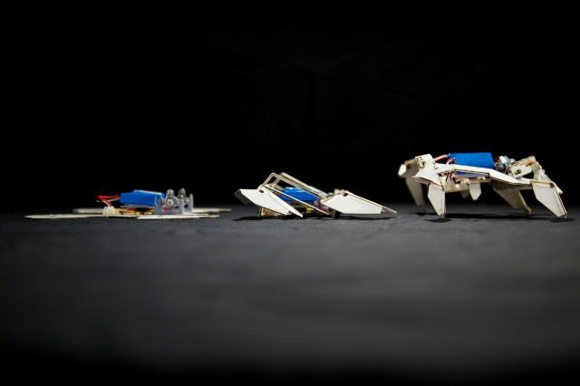 Robot origami: Watch a flat sheet fold itself into a bot, go for a walk