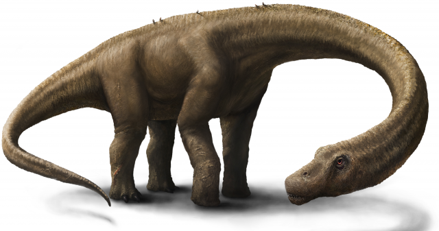 Meet Dreadnoughtus, the 65-ton dinosaur