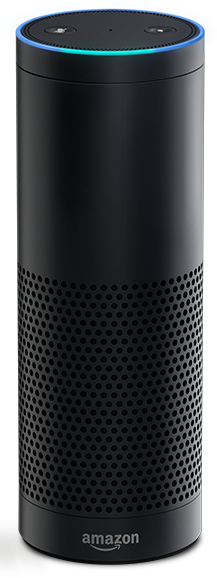 The Amazon Echo is going to be very confusing if users have someone named Alexa in their families.