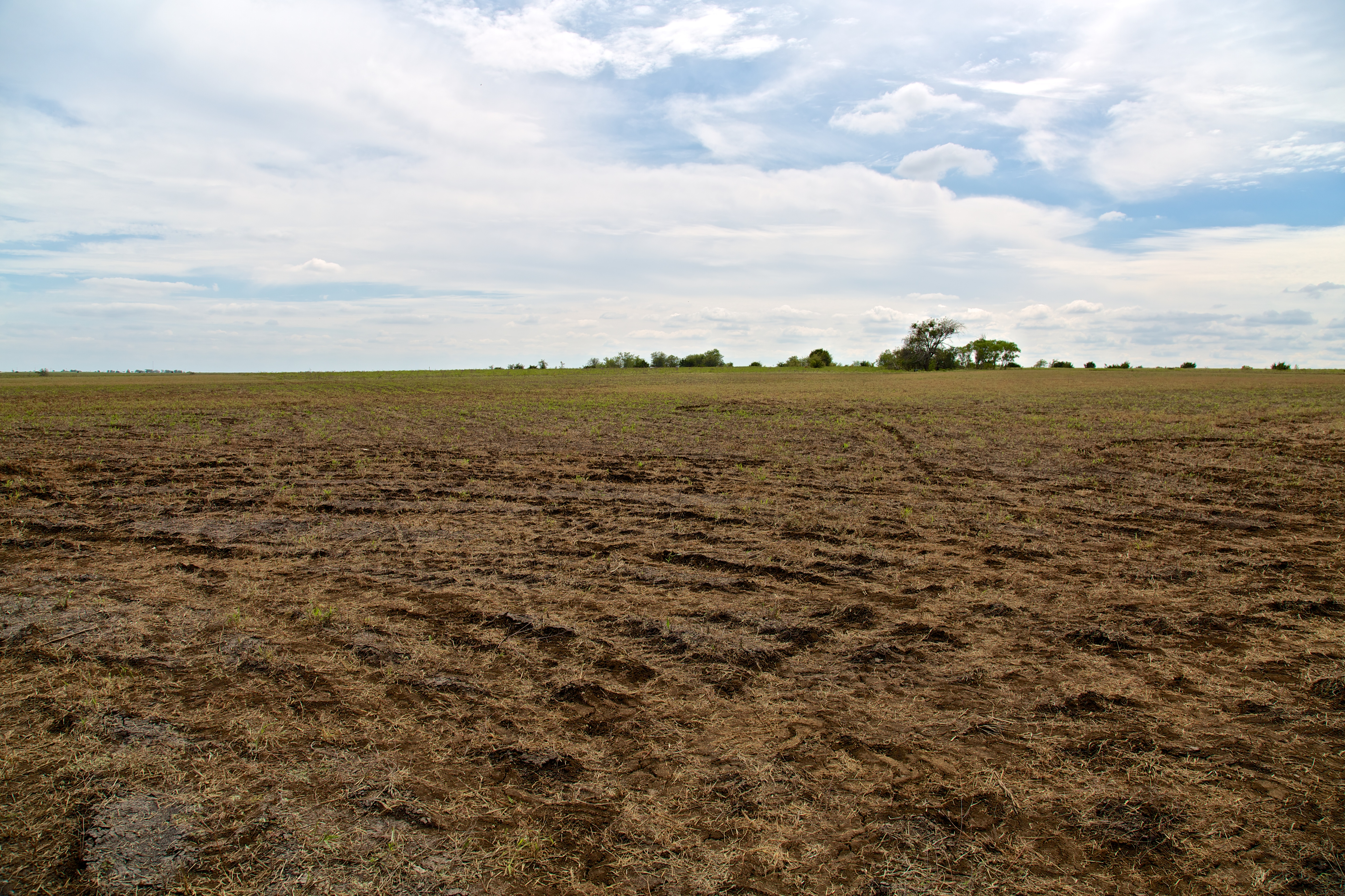 Firefly's test site is currently a big expanse of empty Texas prairie.