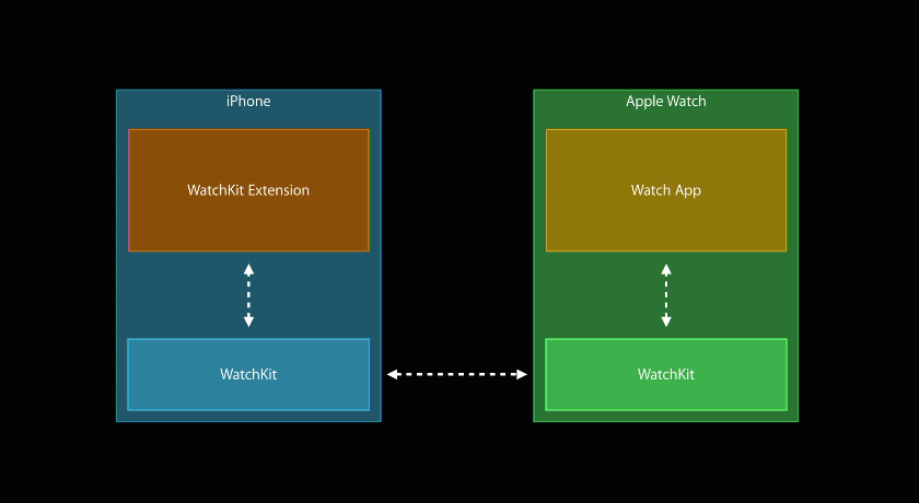 The Apple Watch and its connected iPhone will be communicating continuously. The watch displays your app's UI and sends information back to your phone, which actually executes your app's code.