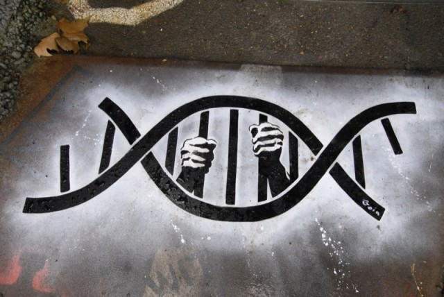 Pre- and Post- Conviction DNA Collection Laws in the ...