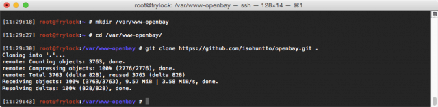 Cloning Open Bay's GitHub repo.