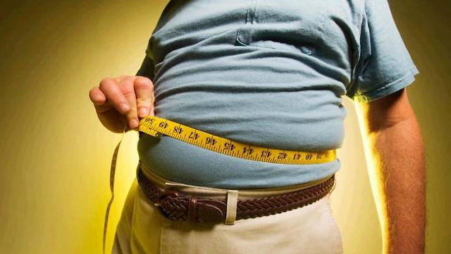 Immune cells tweak the body's metabolism to help control obesity