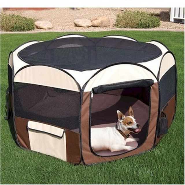 One of the best things about SkyMall was that you could always guarantee a bunch of pictures of pets tolerating their human's efforts at differentiating this pet bed from other pet beds.