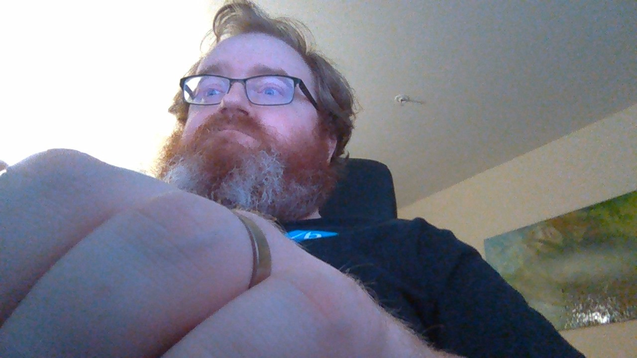 The view from the webcam is exciting and edgy, I suppose, but not entirely useful. Dat beard, tho', amirite?