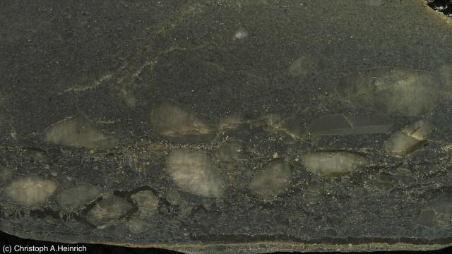 "A sample of the gold-bearing Witwatersrand rock. The visible, gold-colored specks are actually ""fool's gold"" (pyrite). The gold in this rock would mostly be found in the dark layers near the bottom, which were once living mats of microbes."