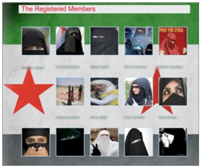information technology syrian rebels lured into malware honeypot sites through sexy online chats
