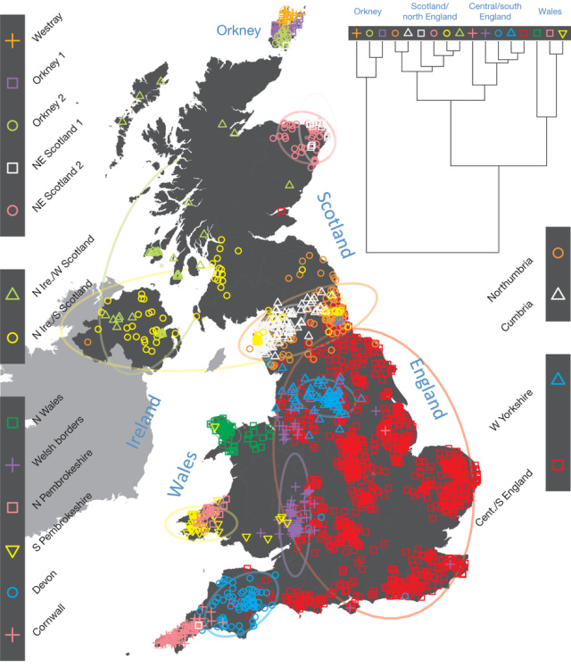 Neanderthal Dna Test DNA map of UK migratio...