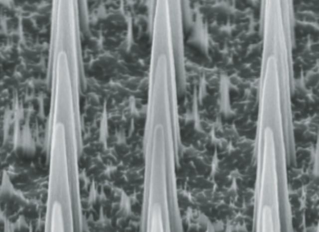 Nanoneedles deliver nucleic acids inside cells