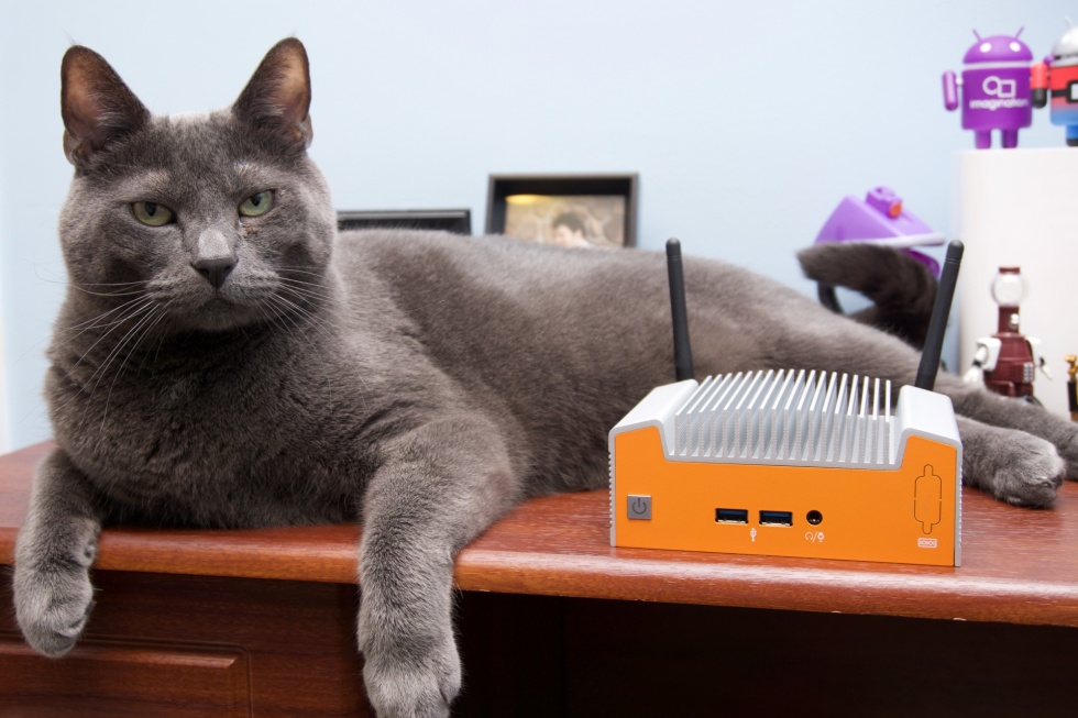 Review Cat is decidedly unimpressed by this fanless NUC, but he's not the target audience.