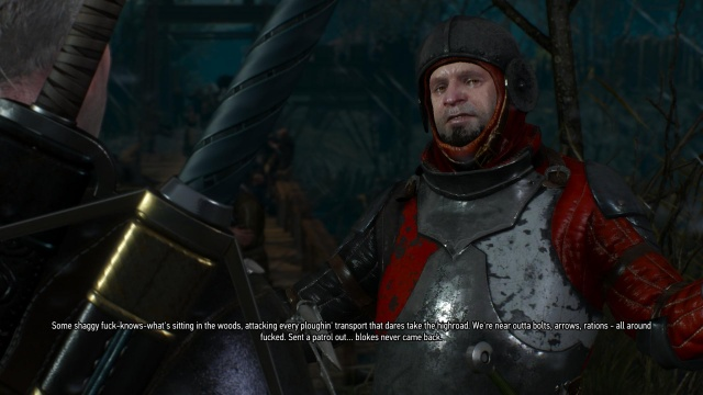 The Witcher 3: Wild Hunt review—hunting fiends for fun and