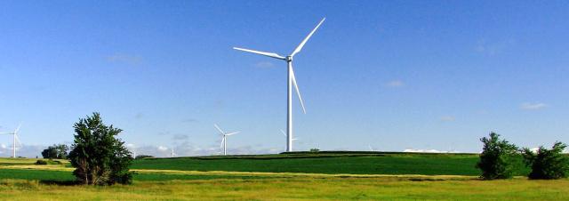 Turbines tower over corn fields in Iowa.
