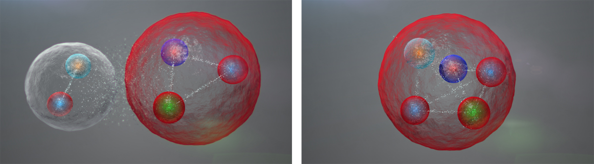 The new particle may be a composite of two familiar ones (left) or the first of a class of five-quark particles.