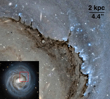 A closer view of the galaxy's leading edge, showing the strong effects of ram pressure.