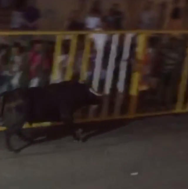 A blurry video shot by an Instagram user confirmed that a man watching a Spanish town's running of the bulls was gored by a bull that had broken away from the pack. Here, the bull can be seen running behind a barricaded crowd moments before striking the 32-year-old victim.