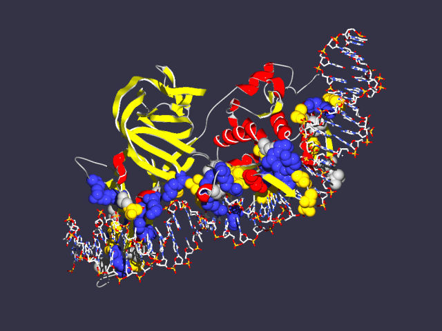 The intein protein latched on to DNA, ready to cut it.