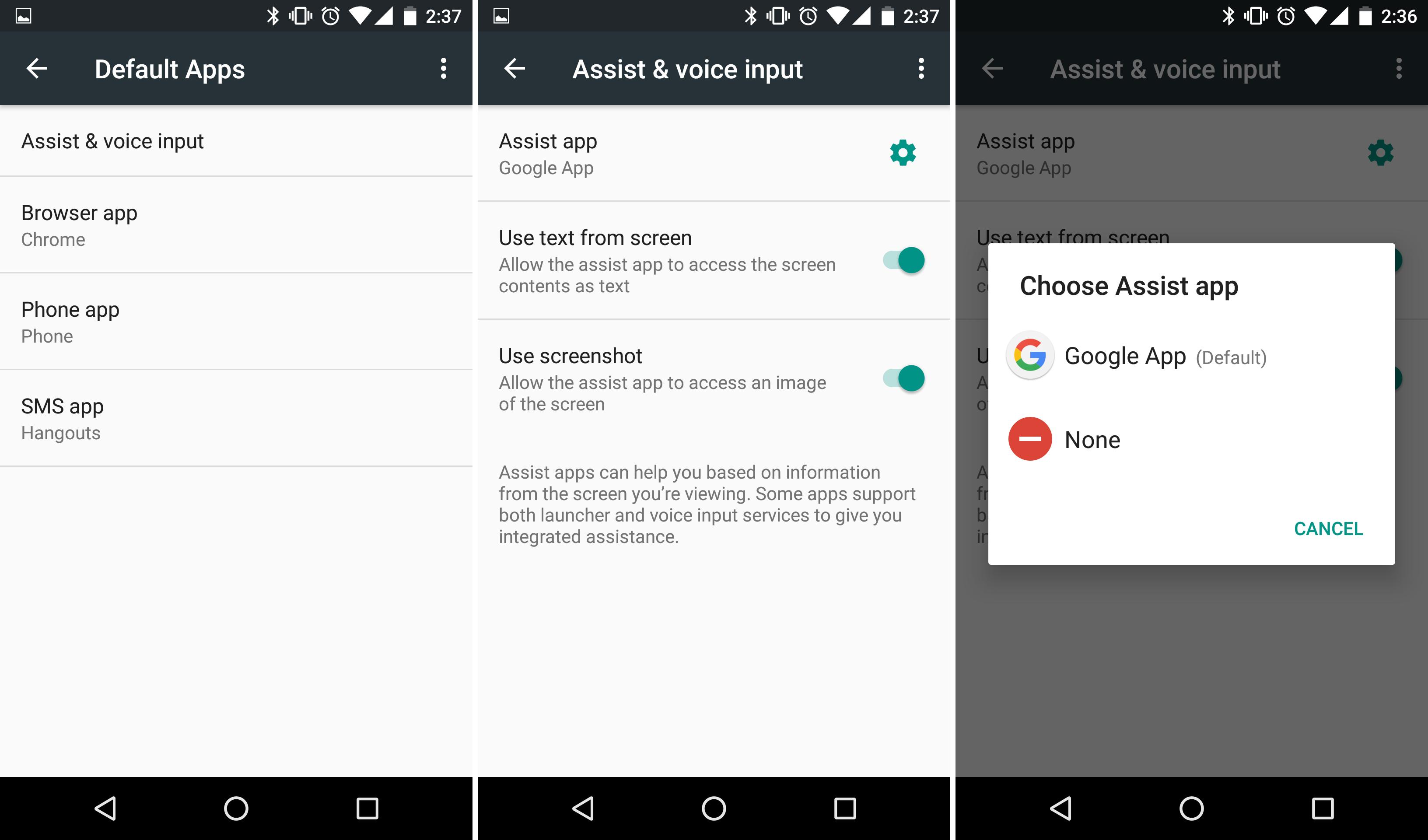 The assist API settings.