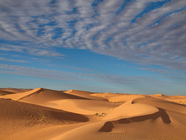 Beneath the Saharan sands, a river valley