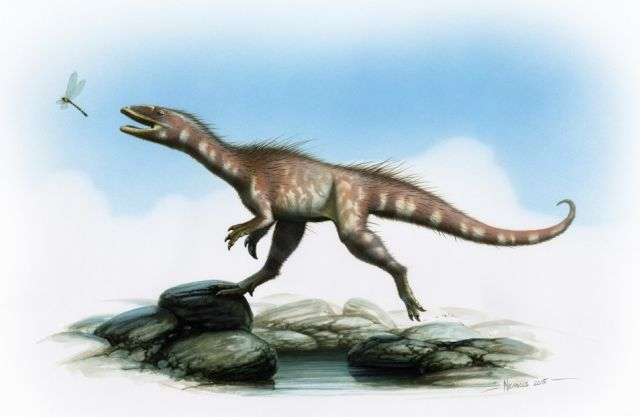 """Dragon thief"" Jurassic dinosaur discovered in Wales"